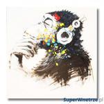 Obraz olejny malowany ręcznie na płótnie Monkey 80x80cm w sklepie internetowym SuperWnetrze.pl