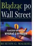 Błądząc po Wall Street. Dlaczego nie można wygrać z rynkiem? w sklepie internetowym Maklerska.pl