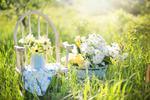 Fototapeta kwiat, kwiaty polne 305 w sklepie internetowym Deco-Wall.pl