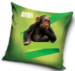 Poszewka 40x40 C 3D Animal Planet Małpa AP 1003 4902 w sklepie internetowym Karo.waw.pl