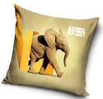 Poszewka 40x40 C 3D Animal Planet Słoń AP 1002 4896 w sklepie internetowym Karo.waw.pl