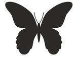 Motyl 6 naklejka mała naklejka na meble, samochód w sklepie internetowym Naklej-To