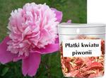 Płatki kwiatu piwonii - do zastosowań magicznych w sklepie internetowym As2.pl