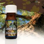 Zapach lasu, olejek zapachowy w sklepie internetowym As2.pl