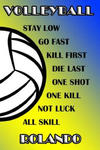Volleyball Stay Low Go Fast Kill First Die Last One Shot One Kill Not Luck All Skill Rolando: College Ruled Composition Book Blue and Yellow School Co w sklepie internetowym Libristo.pl