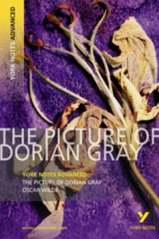 essay on the picture of dorian gray