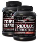 HI TEC Tribulus Terrestris 100 kap. + 60 kap GRATIS w sklepie internetowym MegaPower.pl
