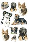 Naklejki HERMA Decor 3341 psy x1 w sklepie internetowym papierA4.pl