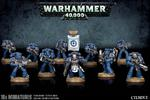 Space Marines - Figurki Tactical Squad w sklepie internetowym SuperSerie.pl