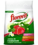 Nawóz FLOROVIT truskawka i poziomka 1kg w sklepie internetowym egarden24.pl