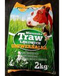 Mieszanka traw łąkowych uniwersalna Planta 2kg w sklepie internetowym egarden24.pl