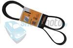 Pasek wielorowkowy ContiTech PEUGEOT 406 w sklepie internetowym Sklepmoto.eu
