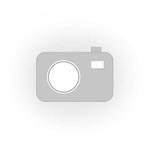 Przybornik na biurko Q-CONNECT na długopisy, z kolorowymi karteczkami, przeźroczysty w sklepie internetowym Dla Biura Zakupy