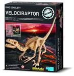 Wykopaliska - Dino szkielety - VELOCIRAPTOR w sklepie internetowym ArtEquipment.pl