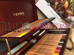 Lyra Rembrandt Polycolor zestaw 105 elementów w sklepie internetowym TuLuz.pl