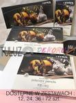 Kredki Lyra Rembrandt Polycolor w sklepie internetowym TuLuz.pl