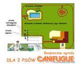 Niewidzialne ogrodzenie Canifugue dla 2 psów w sklepie internetowym EasyPet.pl
