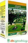 NASIONA TRAWY BABILON 1kg NA TERENY SUCHE I PIASZCZYSTE AGRO-LAND w sklepie internetowym Alleogrodniczy