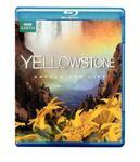 Yellowstone: Battle for Life [Blu-ray] w sklepie internetowym Ukarola.pl