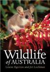 Dzikie życie Australii Wildlife Of Australia w sklepie internetowym Ukarola.pl