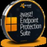 avast! Endpoint Protection Suite w sklepie internetowym antywir24.pl