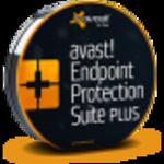 avast! Endpoint Protection Suite Plus w sklepie internetowym antywir24.pl