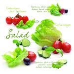 SERWETKI PAPIEROWE - Salad (SLD) w sklepie internetowym Przestrzen.com.pl