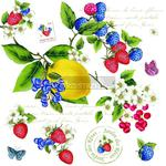 SERWETKI PAPIEROWE - Secret Garden - SEGR w sklepie internetowym Przestrzen.com.pl