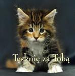 ZIARENKA - 17 Tęsknię za tobą w sklepie internetowym Księgarnia Dobrego Pasterza