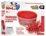 Doświadczenia Hodowla kryształów Czerwone w sklepie internetowym Mazakzabawki.pl