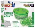 Doświadczenia Hodowla kryształów zielone w sklepie internetowym Mazakzabawki.pl