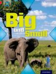 Project X Origins: Red Book Band, Oxford Level 2: Big And Small: Big And Small w sklepie internetowym Gigant.pl