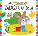 Przygoda Zajączka Antosia w sklepie internetowym Gigant.pl