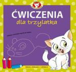 Ćwiczenia Dla Trzylatka Akademia Kota Filemona w sklepie internetowym Gigant.pl