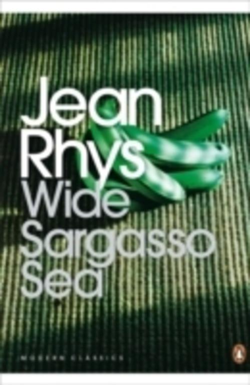 narrators wide sargasso sea