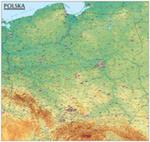 Polska. Mapa Ogólnogeograficzna Mapa Ścienna Oprawiona W Listwy w sklepie internetowym Gigant.pl