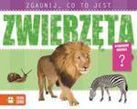 Zgadnij Co To Jest Zwierzęta w sklepie internetowym Gigant.pl