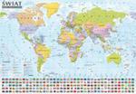 Świat Mapa Polityczna I Krajobrazowa Mapa Ścienna Oprawiona W Listwy w sklepie internetowym Gigant.pl