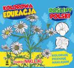 Kolorowa Edukacja Rośliny Polski - Naklejka w sklepie internetowym Gigant.pl
