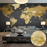 Fototapeta XXL - Mapa świata: Nowoczesna geografia II w sklepie internetowym Radimar