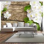 Fototapeta - Surowe piękno w sklepie internetowym Radimar