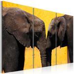 Obraz - Całus pary słoni w sklepie internetowym Radimar