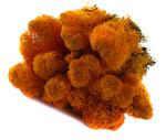 MECH Chrobotek Reniferowy Orange mech na ścianę, mech norweski, pomarańczowy w sklepie internetowym MyFlowers.pl