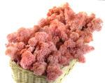 MECH Chrobotek Reniferowy 20.Pink 200 g mech na ścianę, mech norweski, różowy w sklepie internetowym MyFlowers.pl