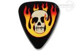 GROVER ALLMAN kostka gitarowa Flame Theme - Flame Skull w sklepie internetowym Gitarownia.pl