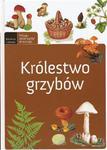 Królestwo grzybów. Młody obserwator przyrody w sklepie internetowym Przyrodnicze.pl
