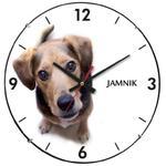 Zegar ścienny soczewka pies jamnik w sklepie internetowym Atrix.pl