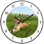 Zegar kolorowy pies golden retriever w sklepie internetowym Atrix.pl