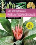 Jak pielęgnować rośliny doniczkowe Choroby i szkodniki w sklepie internetowym Booknet.net.pl