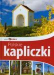 Polskie kapliczki. Piękna Polska w sklepie internetowym Booknet.net.pl